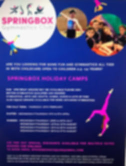 2020 holiday club dates poster .jpg