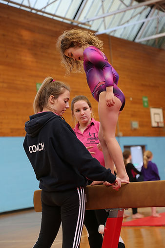 Springbox Gymnastics Junior Coaches