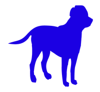 Coral%20Dog%202_edited.png