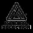 NST logo black.png