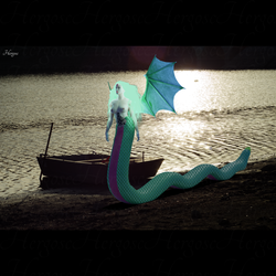 Vouivre au bord du lac
