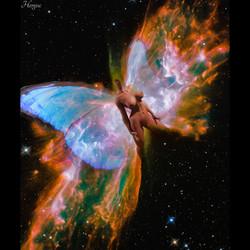 Papillon de l'espace