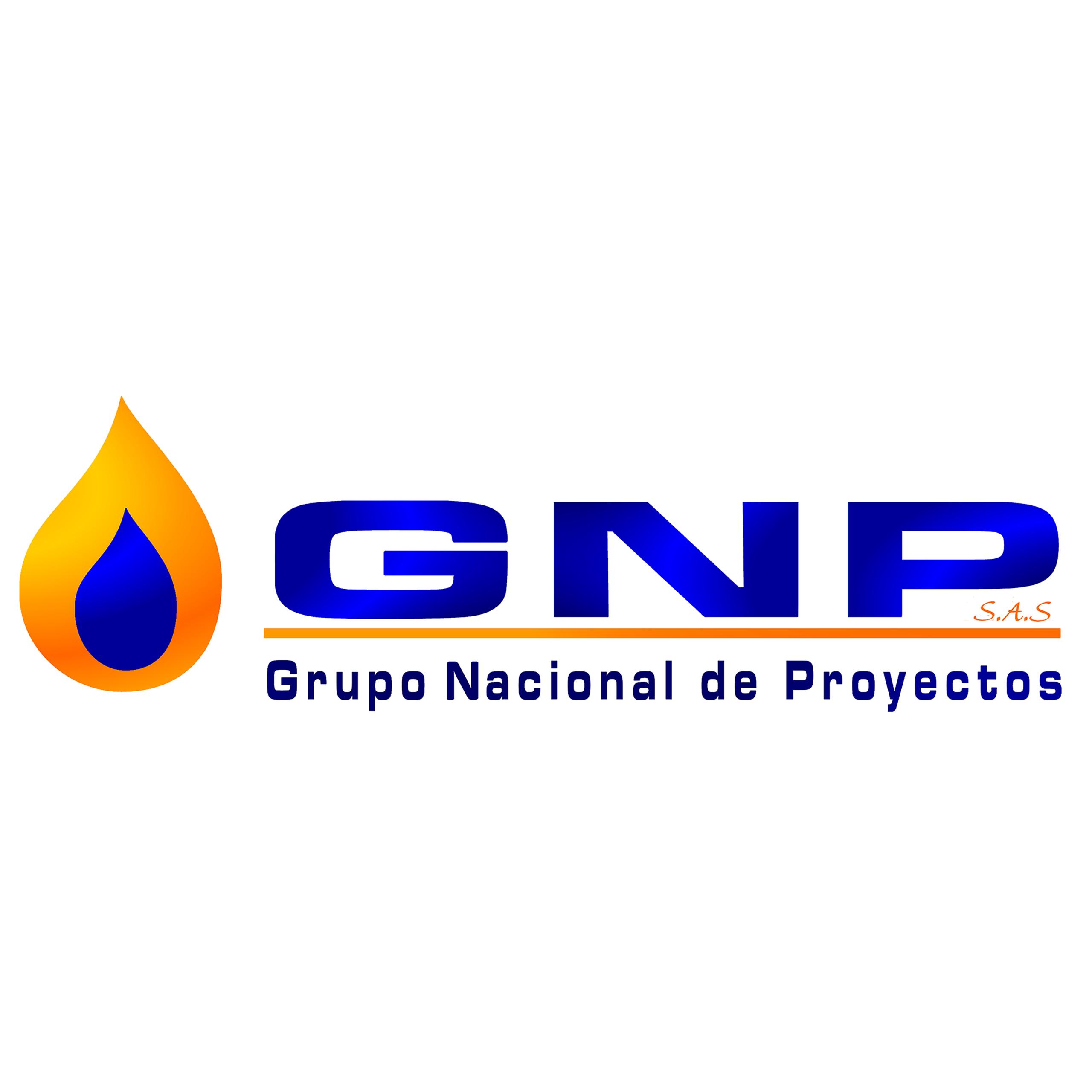 Resultado de imagen para gRUPO NACIONAL DE PROYECTOS