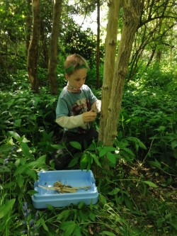 This pupil in Robins class has been enjoying his Forest School lessons at home.