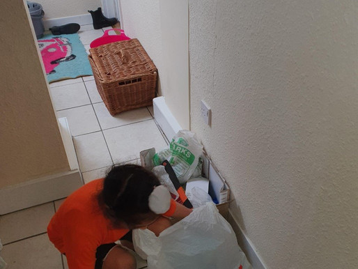 This pupil in Y2 Puffins has been very busy taking photos of things around the home as part of his..