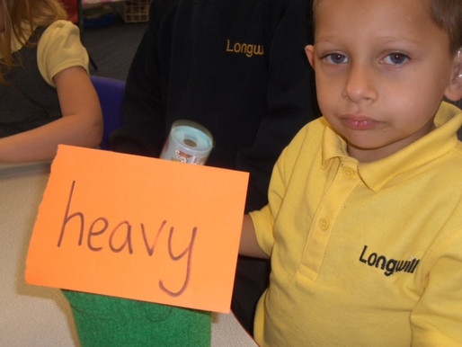 Lily Class (Foundation) have really enjoyed sorting objects into 'heavy ' and 'light&#39