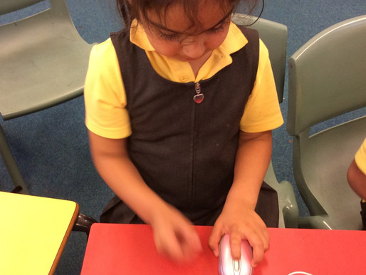 Hummingbirds (Y1) have enjoyed learning the vocabulary (in English and BSL)