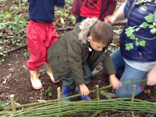 Year one pupils (Hummingbirds) enjoyed weaving willow fences in our forest schools area this week.