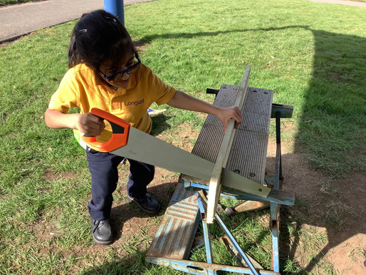 Year 6 made bird boxes as part of their DT woodwork project.