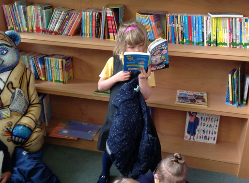Y1 Hummingbirds love to spend time in the library