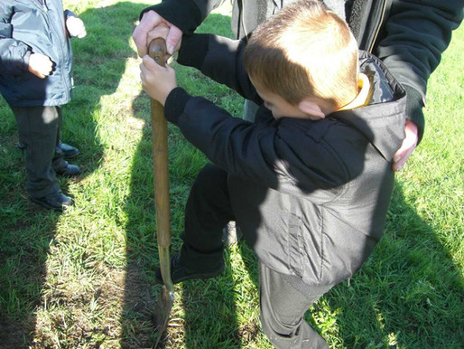 Foundation have been planting bulbs this week in gardening.