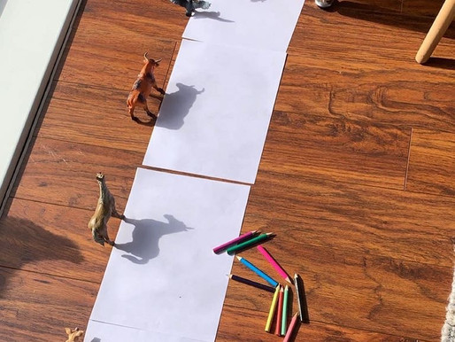 This is a great idea for your children to try at home whilst the sun is shining!