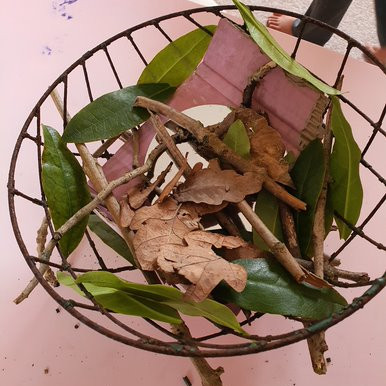 This year 2 pupil has made a lovely birds nest out of things in her garden.
