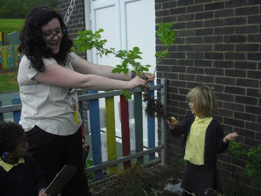 Foundation (Lilies class) have had a wonderful time starting their Gruffalo garden!