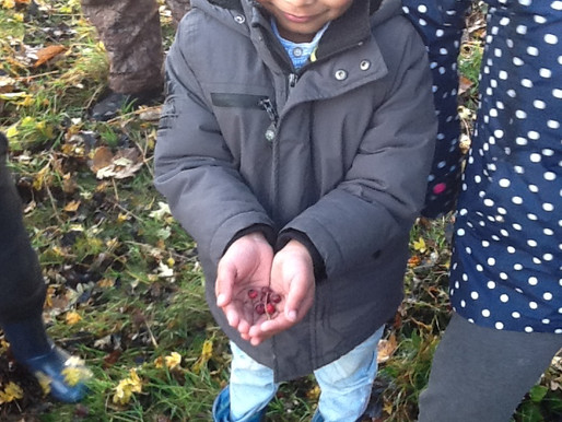 Year 2 Rose Class have been at forest school today. The children enjoyed making hot chocolate and wa