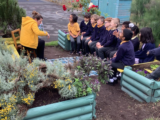 Y3 Meerkats enjoying a BSL story in their Wizard of Oz garden..