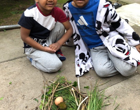 These pupils have had a wonderful time making their own nests.