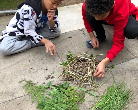 A pupil in year 2 and his brother making a bird's nest as part of our Science work.