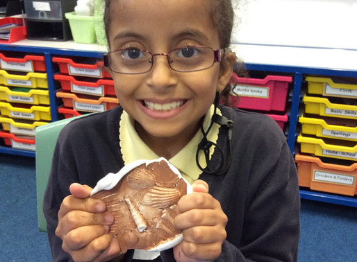 In Science, Y4 Penguins have learnt about fossils