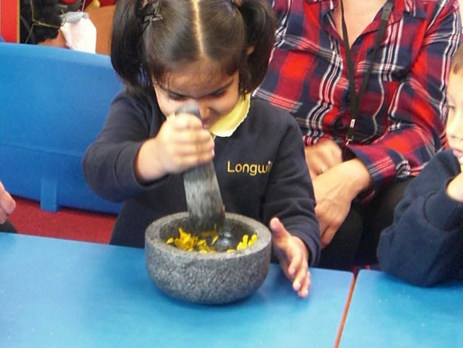 Lily Class (Foundation) really enjoyed using flowers, fruit and vegetables to make their own paint!