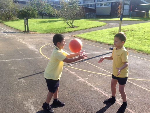 Badgers and Dolphins have been learning to pass and catch the ball whilst moving.