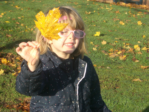 Foundation (Lily class) went for a walk outside to look for changes in our environment (Article 13 E