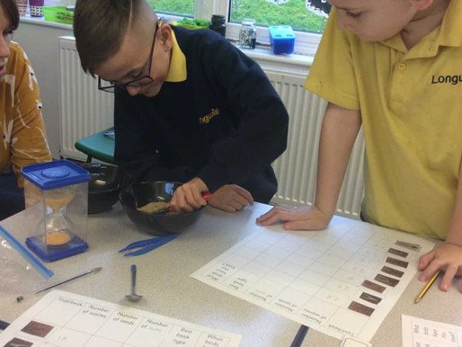 Sunflower Class (Y5) have been testing the efficiency of different bird beaks using different tools.