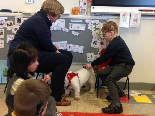 Year 1 Buttercups were very excited yesterday afternoon when Mrs Pillar brought in her dog, Lilly.