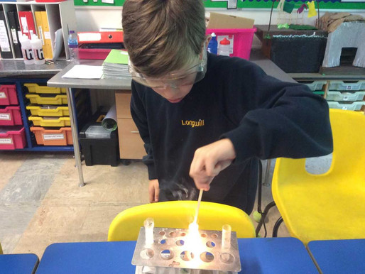 On 3rd May, STEM club learned about oxygen. They made liver and hydrogen peroxide react.