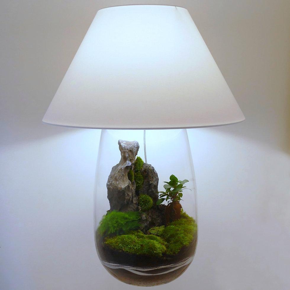 lampe de table lampe de salon terrarium plantes déco décoration lampeterrariumdéco lampeterrariumdécoration Paris montagne