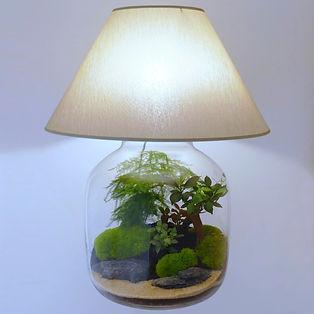 lampe de table lampe de salon terrarium plantes déco décoration lampeterrariumdéco lampeterrariumdécoration Paris plage