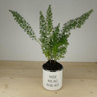 Pot pour plante potiche mais avec un bac+neuf