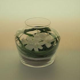 terrarium orchidées blanches stabilisées Paris aucun entretien décoration végétale moderne design contemporain nature zen épuré style japonais