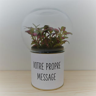terrarium original et pas cher socle avec votre propre message imprimé et globe verre