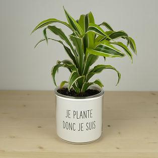 Pot pour plante je plante donc je suis