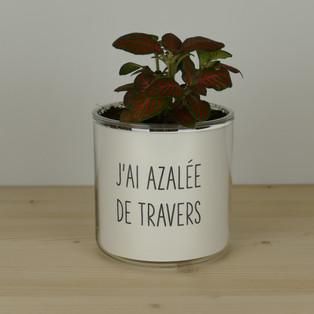 J'AI AZALEE DE TRAVERS