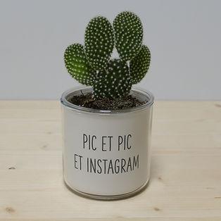 Pot pour plante pic et pic et instagram