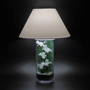 lampe de bureau orchidées blanches stabilisées Paris aucun entretien décoration végétale moderne design contemporain style japonais zen épuré nature et lumière