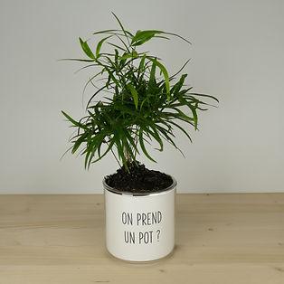 Pot pour plante on prend un pot