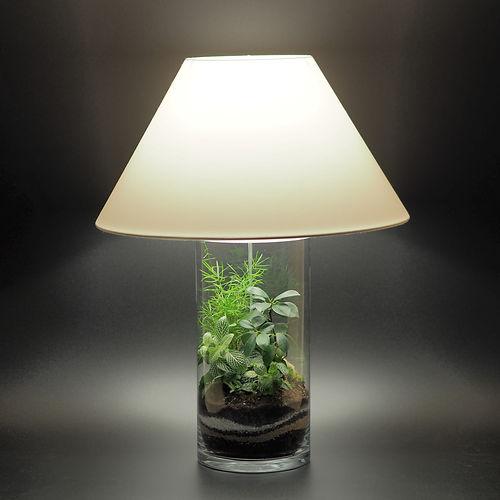 décoration végétale originale nature et lumière émotions