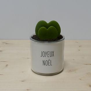 Pot pour plante joyeux noël