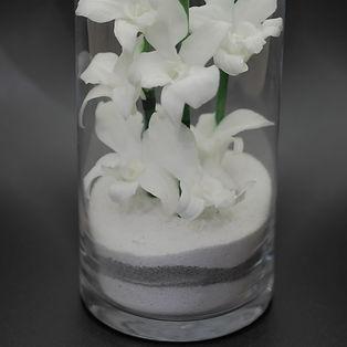 gros plan orchidées blanches stabilisées sables décoratifs