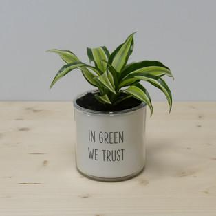 IN GREEN WE TRUST
