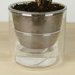 réserve d'eau petit pot de plante
