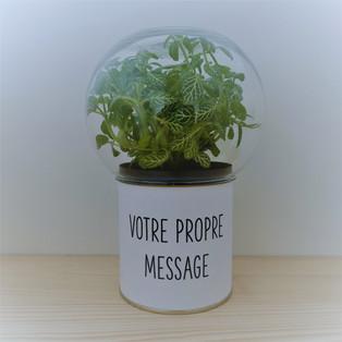 VOTRE PROPRE MESSAGE