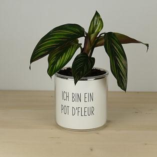 Pot pour plante ich bin ein pot d'fleur