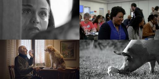 The Best Documentaries of 2020