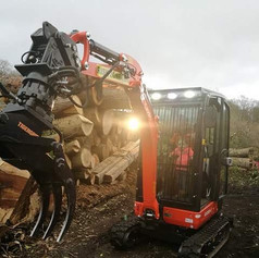 Specialist Mini Digger With Timber Grab
