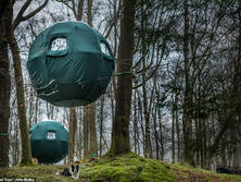 Tree Tents Low Wray