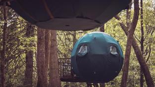 Tree Tents Low Wray Cumbria